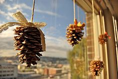 Autumn pine cone decorations - I want to do this!