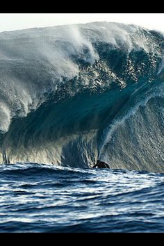 SURFERS UP..