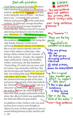 Analytical Essay Outline  English  Pinterest  Outlines To Kill A Mockingbird Analytical Essay A Short Harper Lee Biography  Describes Harper Lees Life Times And Work Also Explains The Historical  And Literary