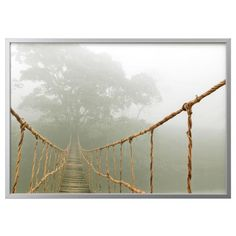 Bjrksta picture and frame jungle journey aluminum color walls bjorksta ikea gumiabroncs Gallery