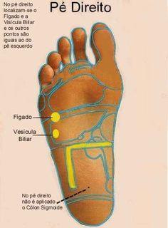 A reflexologia ativa o fluxo de energia através do corpo, intensificando seus poderes de cura e as forças vitais. Djalma reflexologia – mapa dos pés É um método utilizado para a manutenção do…