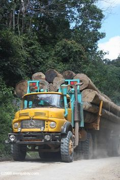 Logging truck carrying timber out of the Malaysian rainforest -- borneo_2978