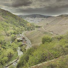 Zwischen Walporzheim und Marienthal auf dem Rotweinwanderweg #ahrtalwandern