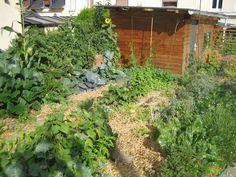 jardin urbain 25m² - 300kg de récoltes