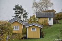 """Download the royalty-free photo """"Summer wooden houses, autumn season, Sweden"""" created by Ciaobucarest at the lowest price on Fotolia.com. Browse our cheap image bank online to find the perfect stock photo for your marketing projects!"""