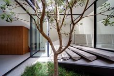 Internal courtyard - restored Victorian terrace in Sydney, known as the Skylight House, by Chenchow Little. Victorian House Plans, Victorian Terrace House, Modern Victorian, Victorian Homes, Residential Architecture, Amazing Architecture, Architecture Details, Modern Architecture, Australian Architecture