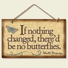 Disney Butterfly Quote~Living with the reality that the only certainty in life is change it freed me to enjoy each moment as it it's my last...that's my mojo and how I make life work in the now of my experiences.