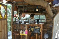木のぬくもりを感じながら食事をする…そんな生活をしてみたいと夢想してもなかなか難しいので、ツリーハウスカフェで気軽に味わいましょう! 日本全国のツリーハウスのお店を集めました。