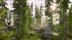 Farrukh Rahman discussed the way he created a high-quality environment with Unity and Megascans and mentioned some useful Unity features and free assets. Unity 3d, 3d Assets, Environment, World, Plants, House, Free, Home, The World