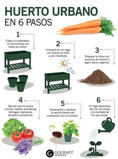 Eco Garden, Vegetable Garden Design, Fruit Garden, Garden Care, Edible Garden, Planting Vegetables, Growing Vegetables, Plantation, Garden Projects