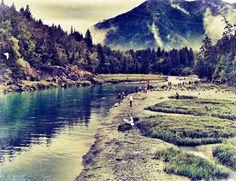 Salmon Fishing near Anchorage Alaska