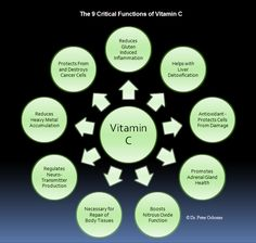 9 Critical Functions of Vitamin C