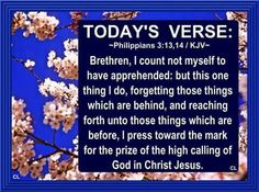 Phil. 3:13-14 Prayer Quotes, Jesus Quotes, Bible Quotes, Psalm 119 11, Scripture For Today, Todays Verse, King James Bible Verses, Shadow Of The Almighty, Verse Of The Day