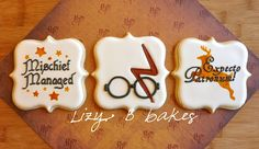 Lizy B: The One With The Scar....More Harry Potter Cookies. This woman's cookie decorating skills are unreal.