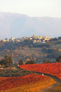Montefalco, province of Perugia, Umbria region, Italy Siena Toscana, Toscana Italia, Places To Travel, Places To See, Umbria Italy, Perugia Italy, Living In Italy, Italy Landscape, Regions Of Italy