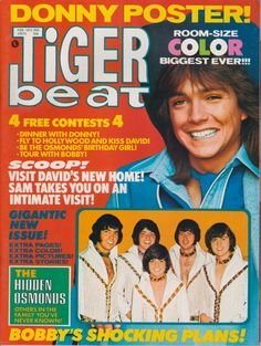 Tiger Beat David Cassidy The Osmonds Donny Osmond The Partridge Family Feb 1972