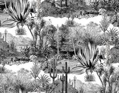 PAMPA F3086001 - Designed by Pierre Frey - Argentinian landscape in black and white