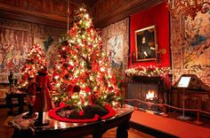 Things to Do in Paris at Christmas http://thingstodo.viator.com/paris/paris-christmas-things-to-do/