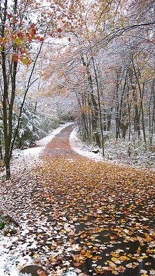 I can almost feel the crisp in the air! :) Cannot wait to run the Autumn roads in Bucks County!!!