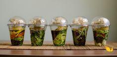 Mini-Saladas.jpg (4928×2436)