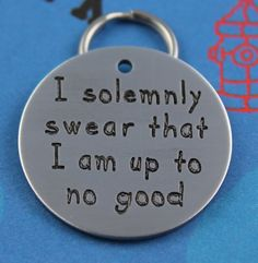 Dog Tags - LARGE Funny Pet Tag Custom Engraved Dog Tag I by critterbling