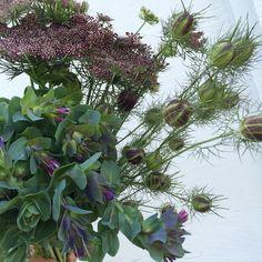 How To Get Warm, Floral Designs, Spring Flowers, Ali, June, Instagram Posts, Plants, Wedding, Casamento
