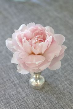 Am I falling in love with peony's...  Romantic for a beach wedding