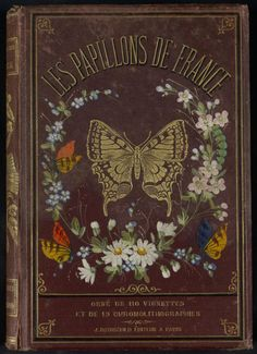 Decorative front cover of 'Les Papillons de France,' Published 1880. Editor - J. Rothschild. Institut National de la Recherche Agronomique (INRA) archive.org