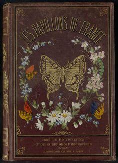 Decorative front cover of 'Les Papillons de France,' Published 1880. Editor - J. Rothschild. Institut National de la Recherche Agronomique (INRA) archive.org