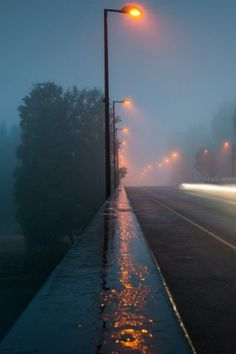 Street Lights Sidewalk Rain Wallpaper