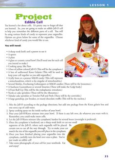 http://wanelo.com/p/3591633/24-hour-science-projects - edible cell science project