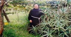 "For 20 years, father Romano Zago from Brazil studied the Aloe Vera plant and managed to discover a natural cure for cancer, which was published in his book ""Cancer Can Be Cured"". While serving God among the poor in Brazil, father Zago noticed that many people use Aloe to treat numerous ailments."