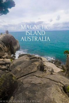 Magnetic Island is offshore from the city of Townsville, Queensland, Australia. The island is known because it is a haven for diverse wildlife.