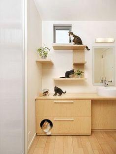 cat decor - Google Search