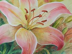 Dianna Willman - Art, Prints, Posters, Home Decor, Greeting Cards, and Apparel