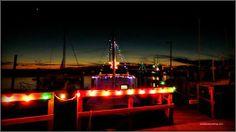 Christmas at marina, photo by Vicki Burton