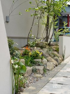 Indoor Gardening Tips You Will Love Landscaping A Slope, Modern Landscaping, Orange Farm, Pocket Garden, Garden Trees, Succulents Garden, Outdoor Gardens, Indoor Gardening, Gardening Tips