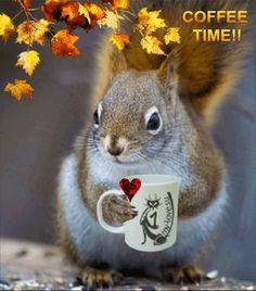 GOOD MORNING......HAVE A CUP OF LOVE....COFFEE  TIME!! ☕️ ♡♥♡