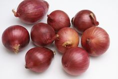 Onion Extract - anti-inflammatory, prevents collagen production, improve saucer-shaped scars.