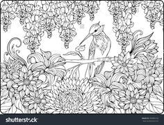 Find Coloring Page Bird On Branch Garden stock images in HD and millions of other royalty-free stock photos, illustrations and vectors in the Shutterstock collection. Thousands of new, high-quality pictures added every day. Garden Coloring Pages, Flower Coloring Pages, Coloring Book Pages, Heather Flower, Bird On Branch, Colorful Garden, Royalty Free Stock Photos, Tapestry, Creative