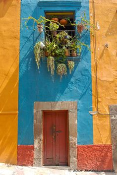 San Miguel deAllende, Mexico   color; decor; paint; inspiration; door