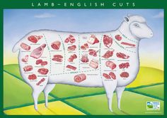 images of lamb cuts - Google Search