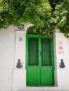 Cat door, Granada, Spain