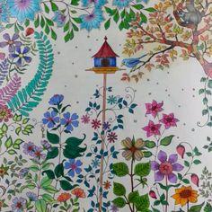 """Minha primeira pintura do livro """"Jardim Secreto"""" #jardimsecretotop #jardimsecreto #livrodecolorir #antiestresse #secretgarden #toamandoisso"""