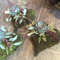 Hjerte med echeveria Art Floral, Grave Decorations, December 25, Echeveria, Creative Decor, Ikebana, Beautiful Gardens, Funeral, Christmas Wreaths