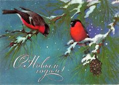 Beautiful vintage greeting card, made in USSR, 1985. Cute little birds, drawn by famous Russian artist A. Isakov. Collectible piece. Year: 1985  Artist:
