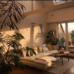 The morning sunlight hits differently :) Home Interior Design, Interior Architecture, Interior And Exterior, Interior Livingroom, Loft Interior, Interior Plants, Exterior Design, Indian Interiors, Aesthetic Room Decor