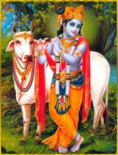 KRISHNA Cute Krishna, Jai Shree Krishna, Radha Krishna Love, Krishna Radha, Lord Krishna Images, Radha Krishna Images, Krishna Pictures, Krishna Photos, Indian Gods