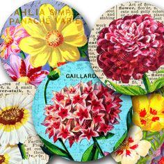 New in July -- French Seed Packets Digital collage sheet 2.5-inch circles. #Printables by piddix no. 865.
