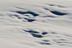 #traces #snow best wishes for a happy 2013 #alps #color #photography #italy